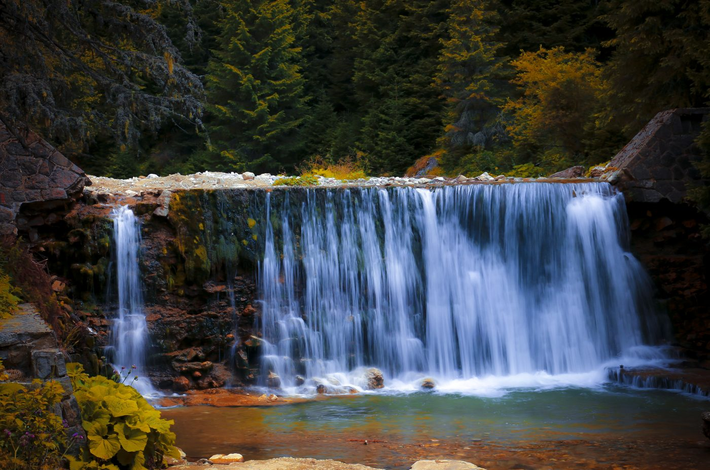 Rainforests, Tropics and Waterfall Vacations