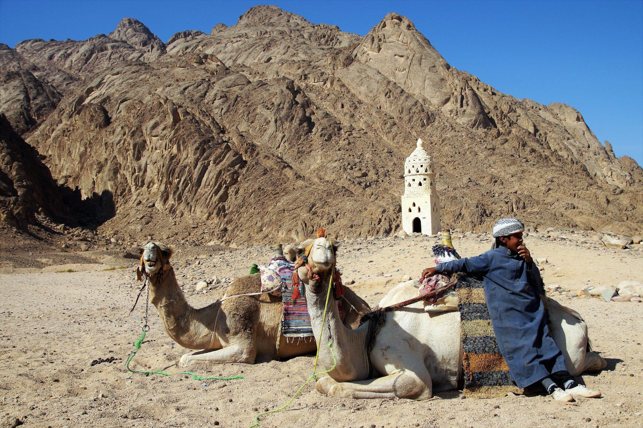 Bedouin - Jordan