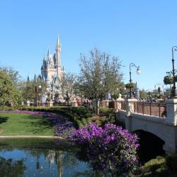 "Walt Disney World Special Events "" Plan Your Vacation Around these Amazing Opportunities"