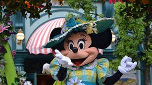 Disney Vacation Rentals and Holiday Homes in Florida, Davenport, Kissimee and Orlando