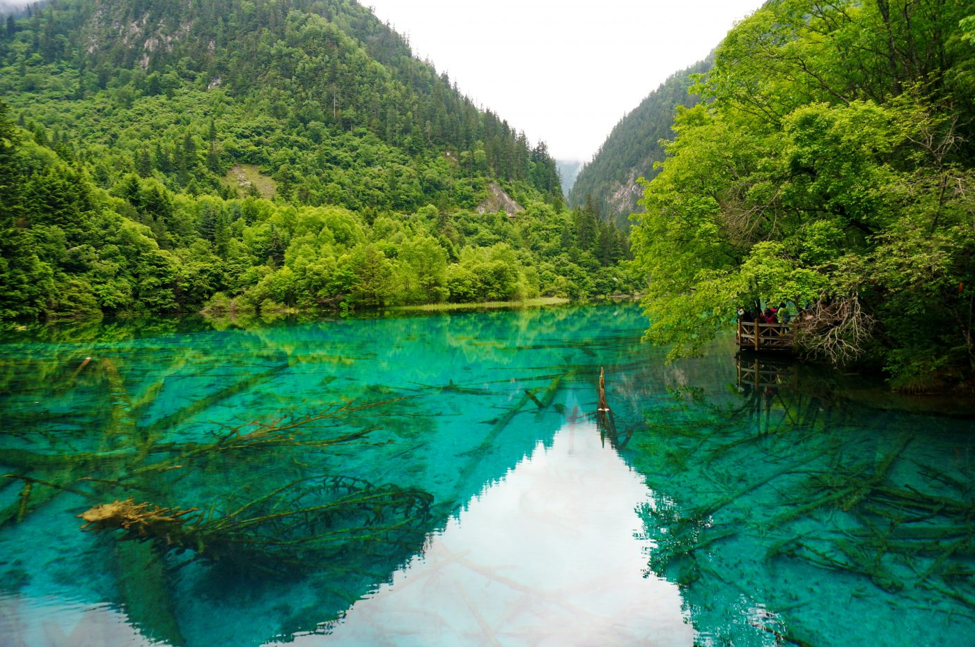 Discover Fairyland Jiuzhaigou in China