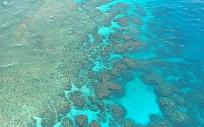 Green Island Escape into a different world