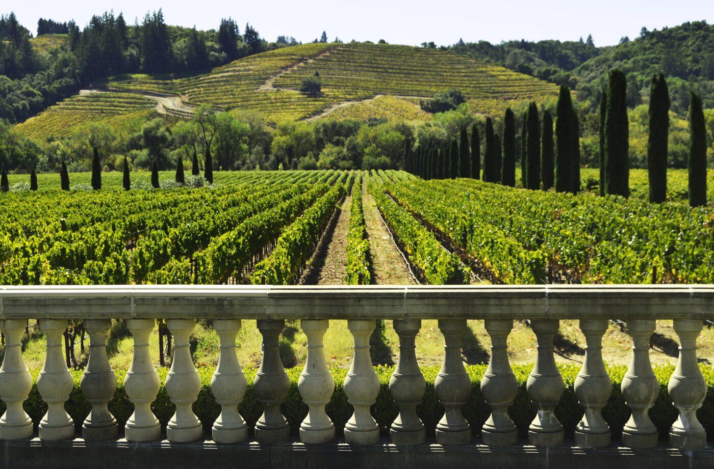 France Vacation Rentals Near Bordeaux's Famous Vineyards