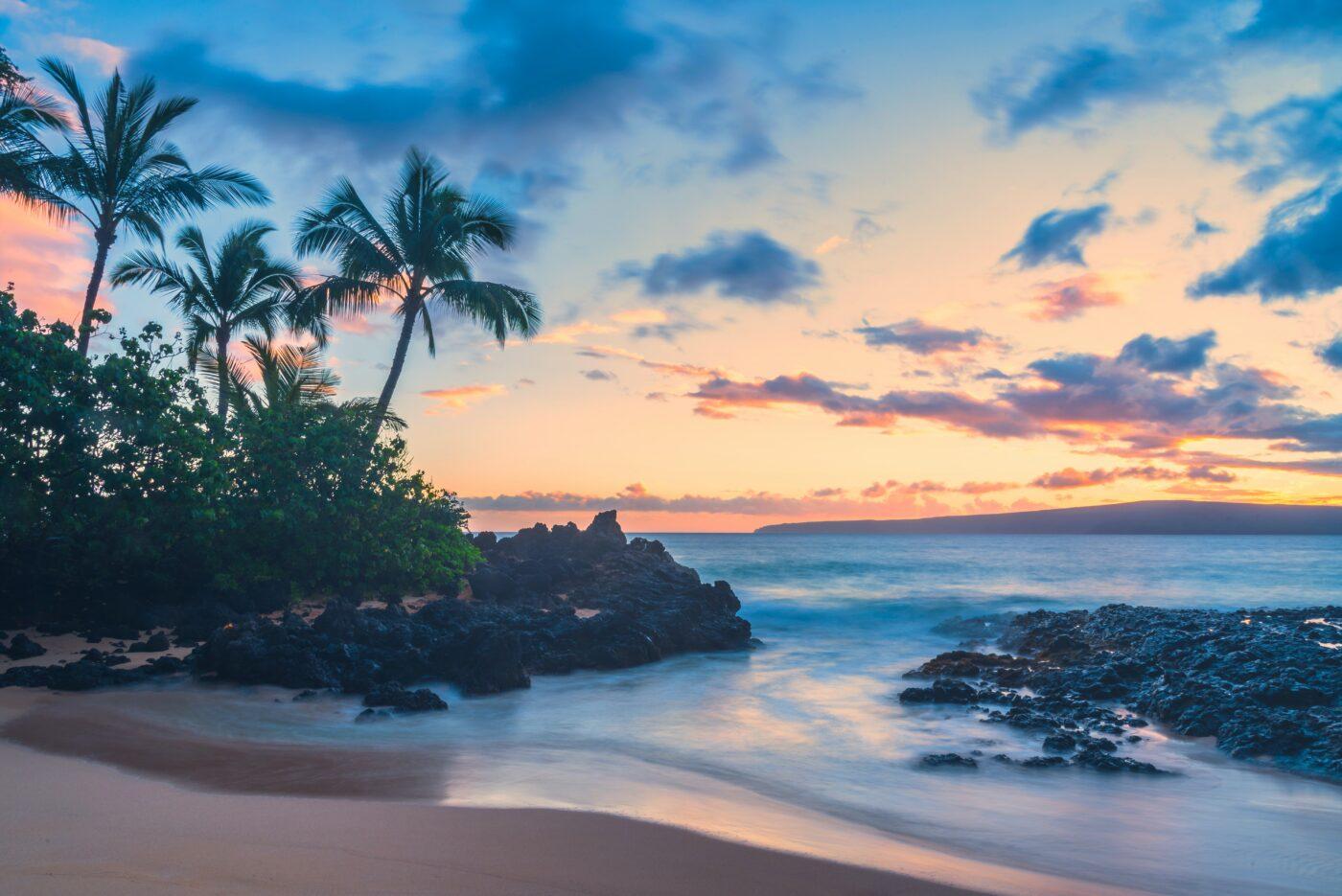 Maui Fun For Everyone